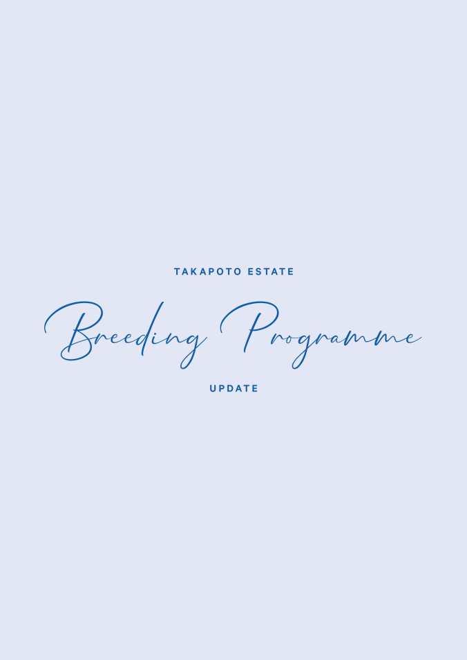 Takapoto-Showjumping-Progamme-Breeding-programme-Pg1